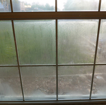 Insulated Double Pane Gl